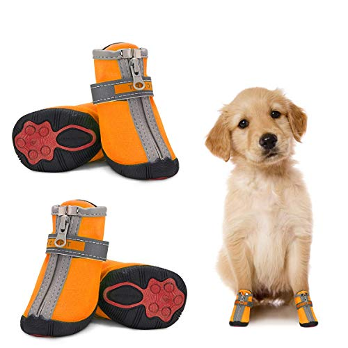 Dociote Hundeschuhe pfotenschutz mit Anti-Rutsch Sohle, reflektierendem Riemen, Klettverschluss, Reißverschluss wasserdicht Schneeschuhe für kleine Hunde 4 Stück Orange 4#